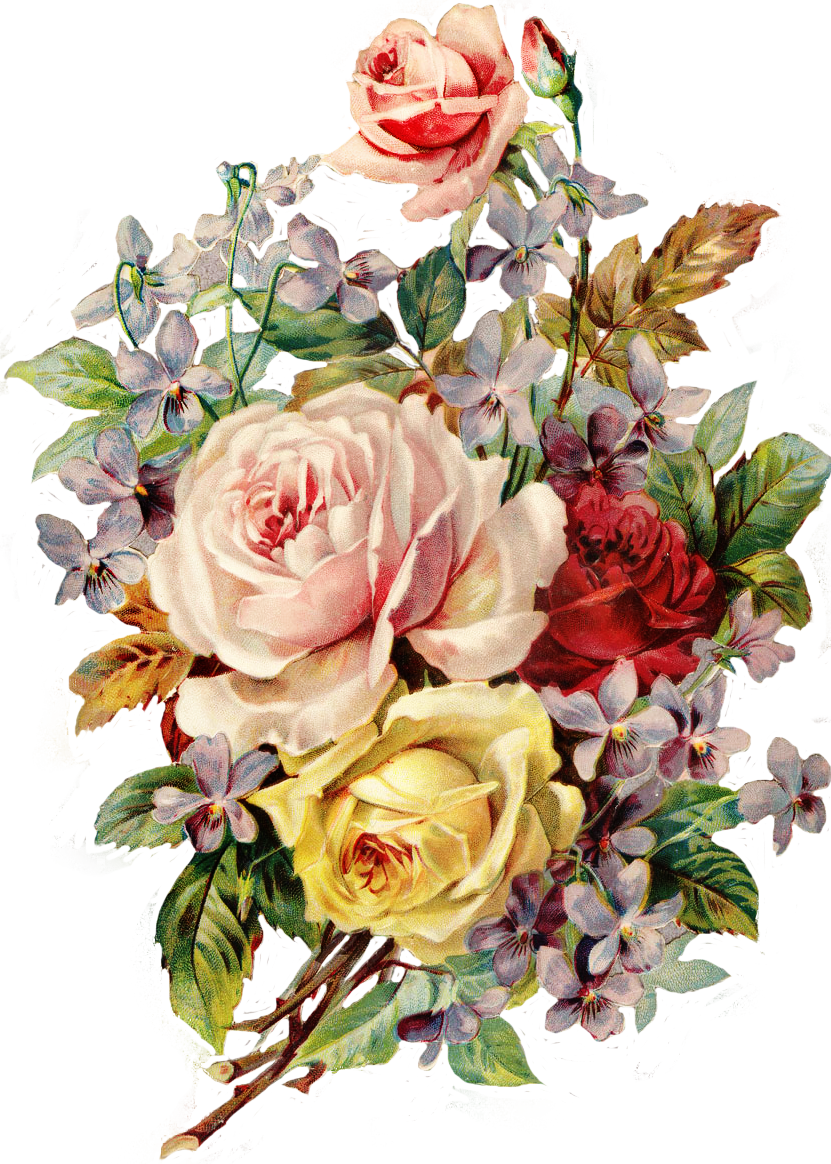 Bouquet vector vintage rose. Http img fotki yandex