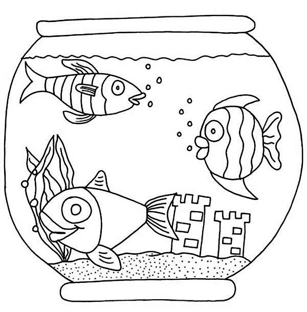 Bowl Colouring Transparent Png Clipart Free Download Ya Webdesign
