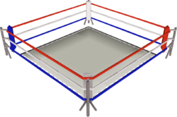 Boxing ring png. Osrs wiki