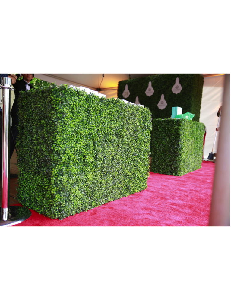 Boxwood hedge png. Curate d cor design