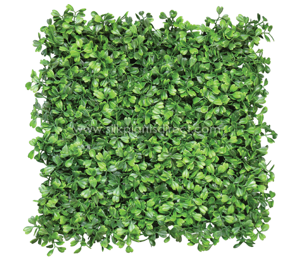 Boxwood hedge shrubs artificial png. Mat tile in green