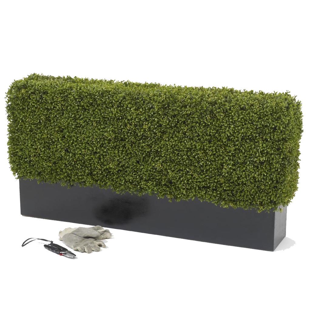 Boxwood hedge shrubs artificial png. Premium deluxe