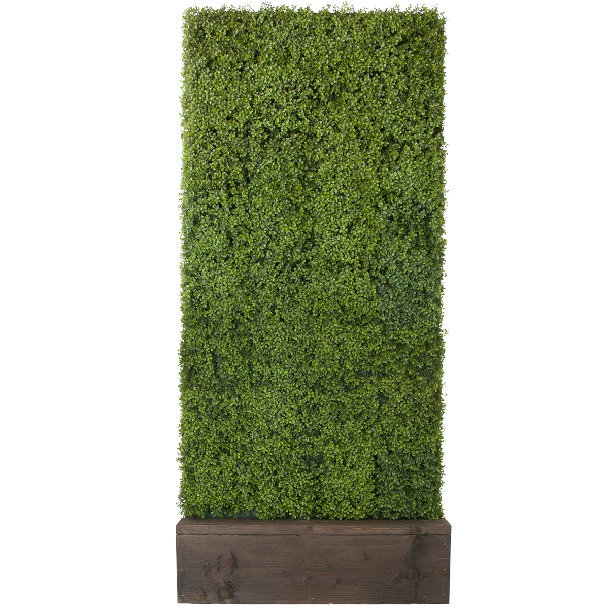 Boxwood hedge shrubs artificial png. Celebrations party rentals