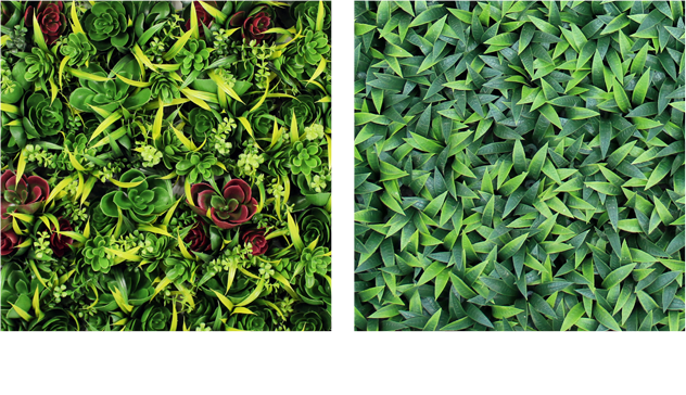 Boxwood hedge shrubs artificial png. Vertical garden makes instant
