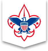 Medal drawing eagle scout. Boy scouts of america