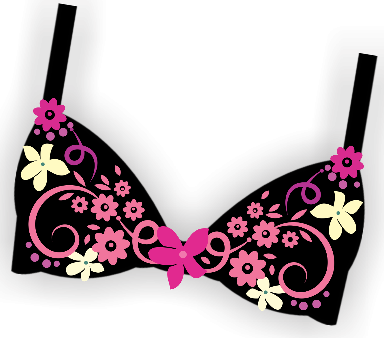 Lingerie vector illustration. Bling the bra clipart