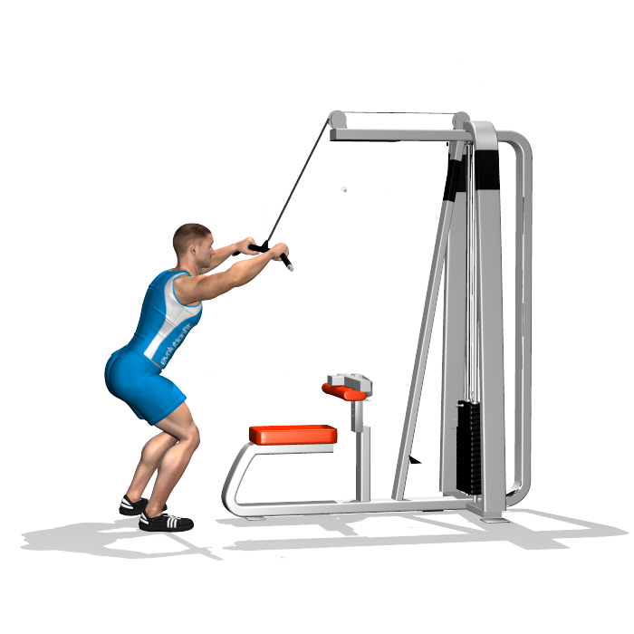 Bra clipart straight arm. Pulldown involved muscles during