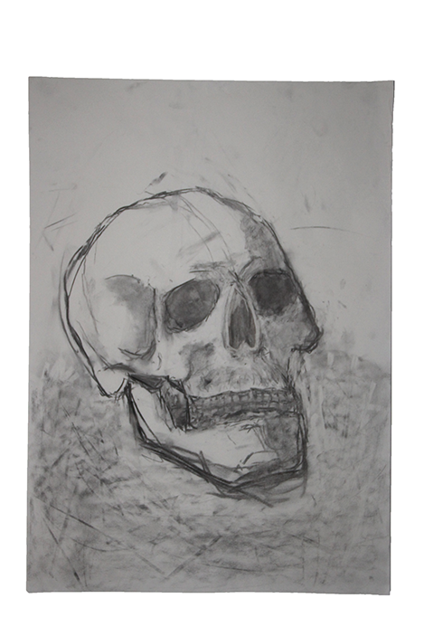 Brady drawing charcoal. Skull in