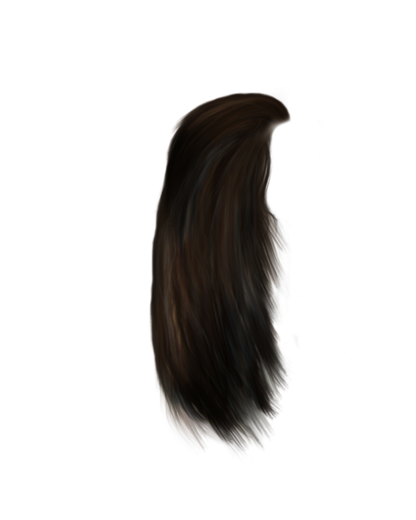 Braided hair png. Download transparent peoplepng com