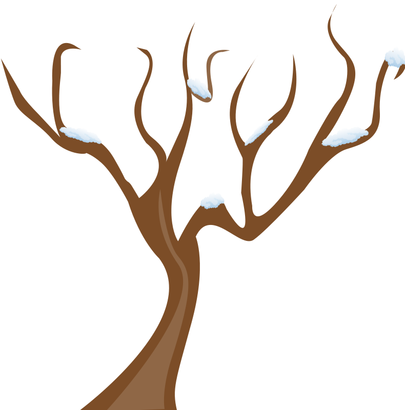 tree branch png clipart