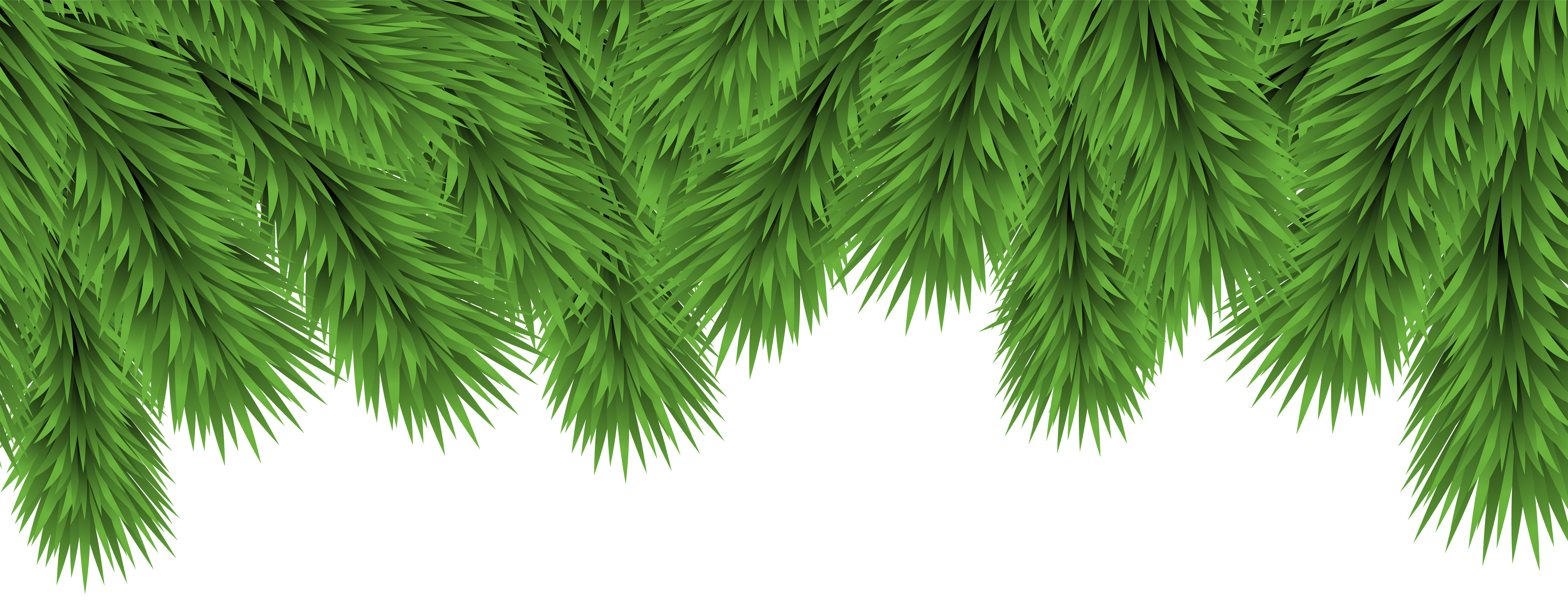 Branch clipart decorative branch. Christmas branches png clip