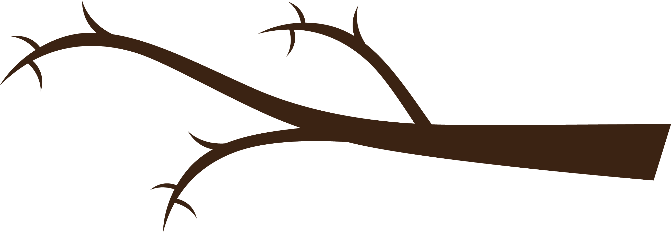 branch clipart png
