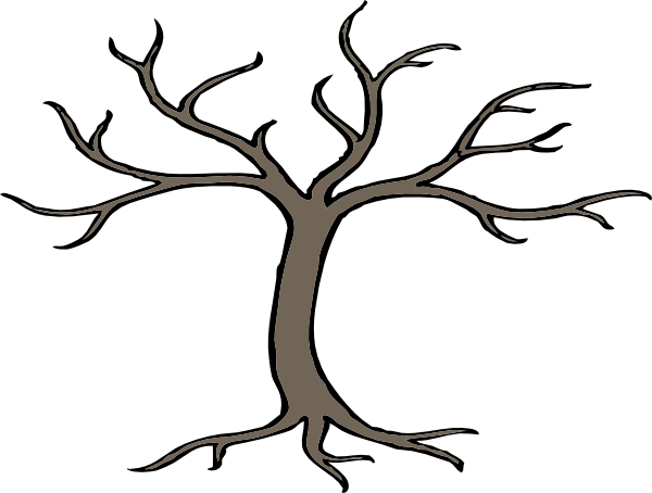 Drawing branches tree. Branch