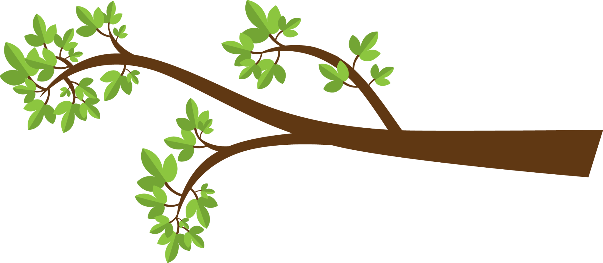 Branch png cartoon. Collection of tree