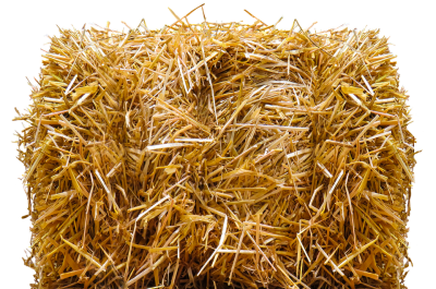 Brass clip hay. Download free png square