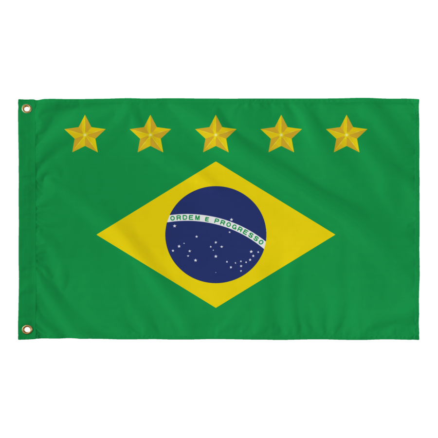 Brazil drawing print. Flag with world cup