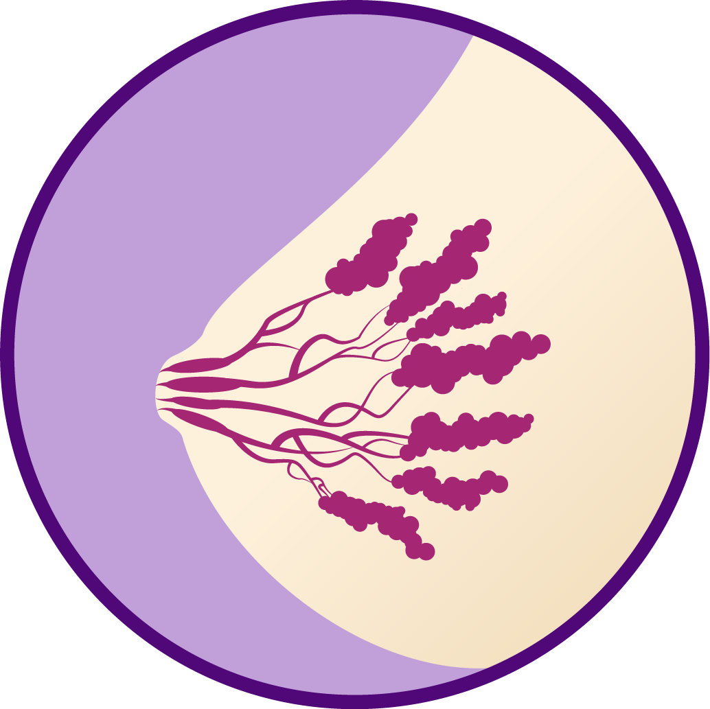 Breast clipart side view. Violet iodine what are