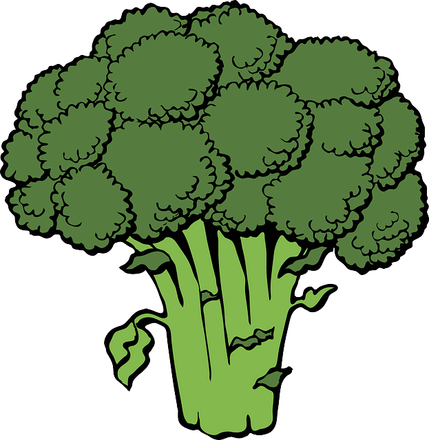 Broccoli clipart cooked. Free photo cook vegetables