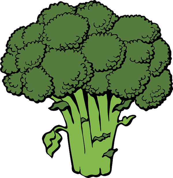 Broccoli clipart cooked. Zero to hero nutrition