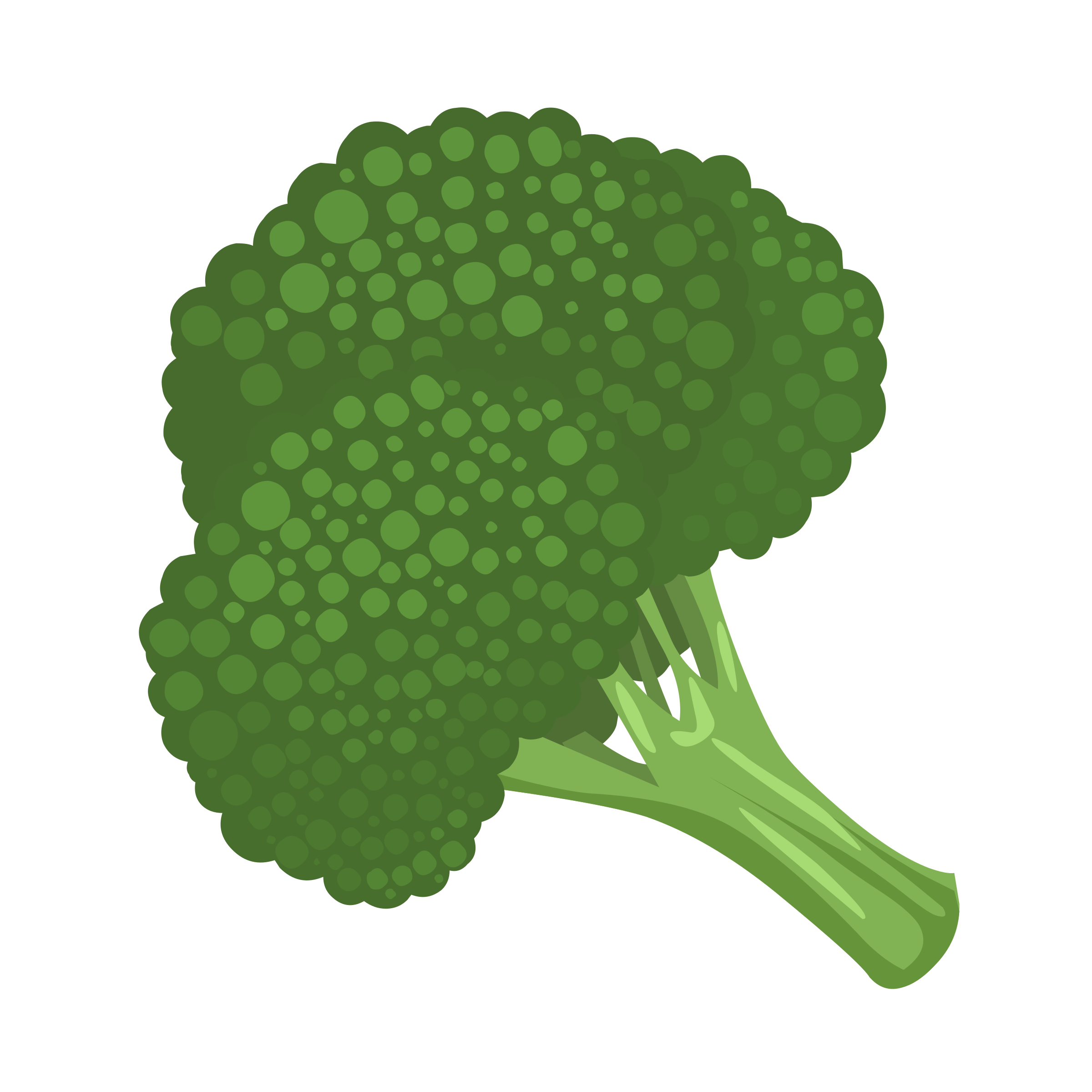Broccoli clipart useful food. Icons png free and