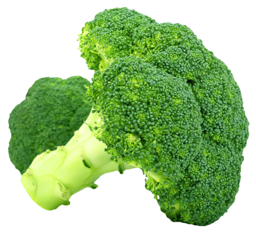 broccoli plant png