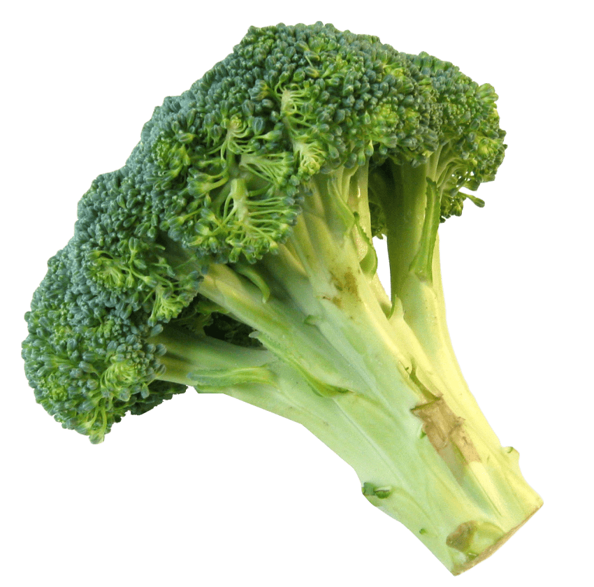 Broccoli png. Fresh free images toppng