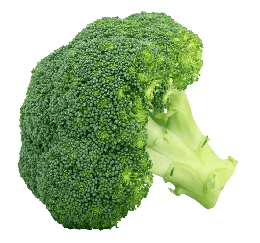 Broccoli png. Free images toppng transparent