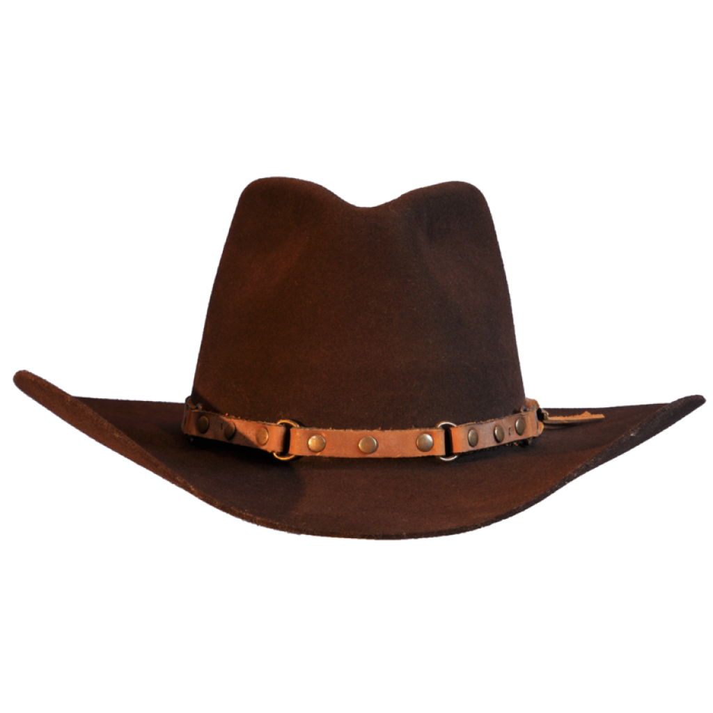 Brown cowboy hat png. Transparent background happy birthday