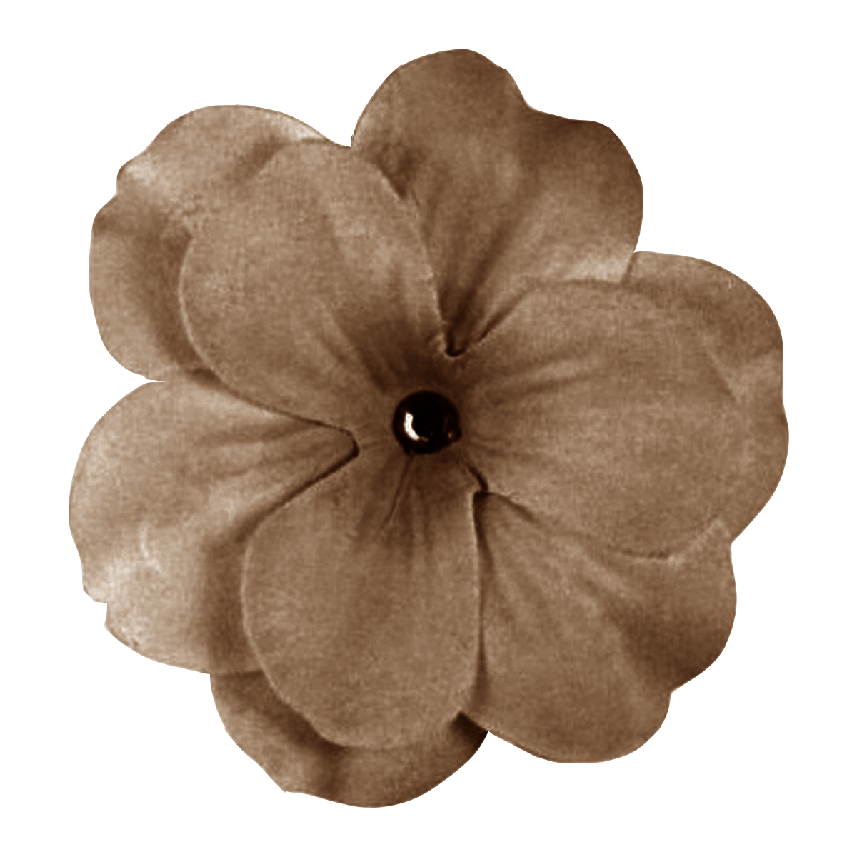 Brown flower png. Grannyenchanted com free elements