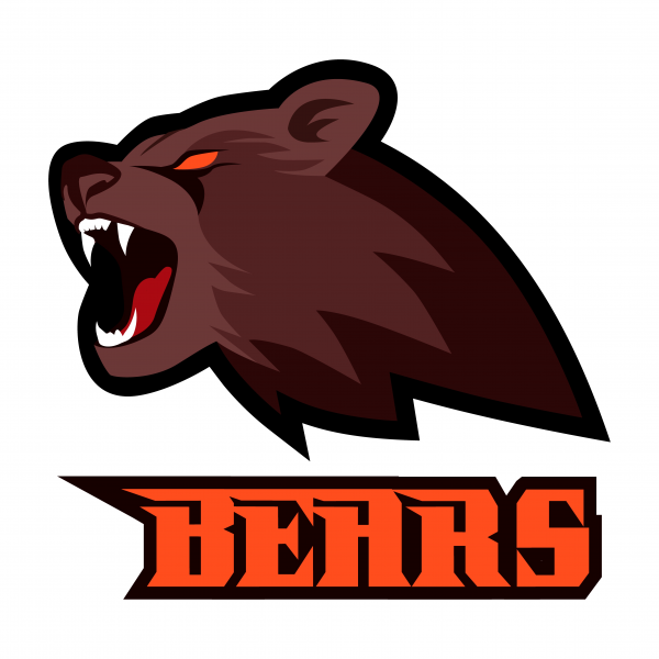 Brown strong furious roaring bear head sport mascot isolated vector  illustration on white.