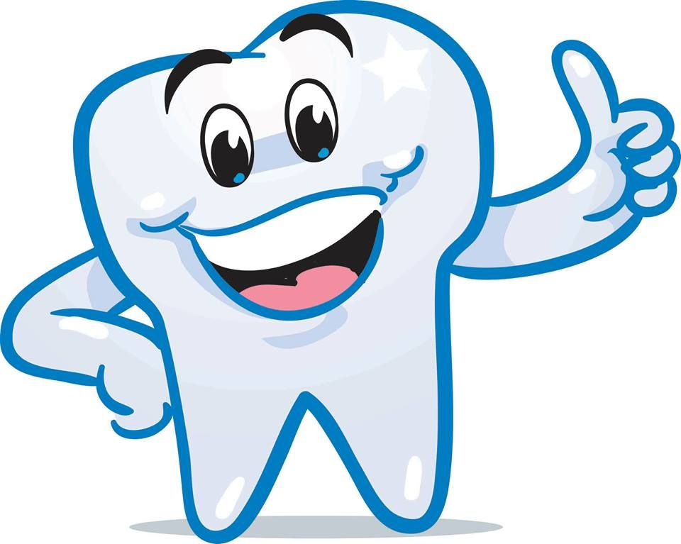 Brush clipart tooth smile. Did you know adult