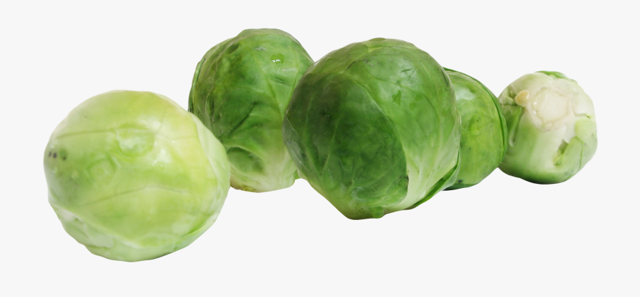 Brussel Sprouts. Brussels png image