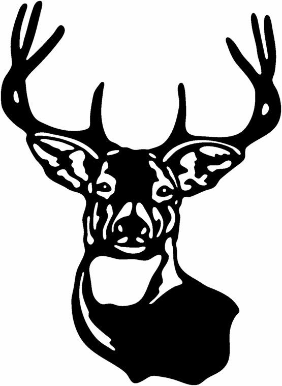Buck clipart big buck. Deer head hunting gloss