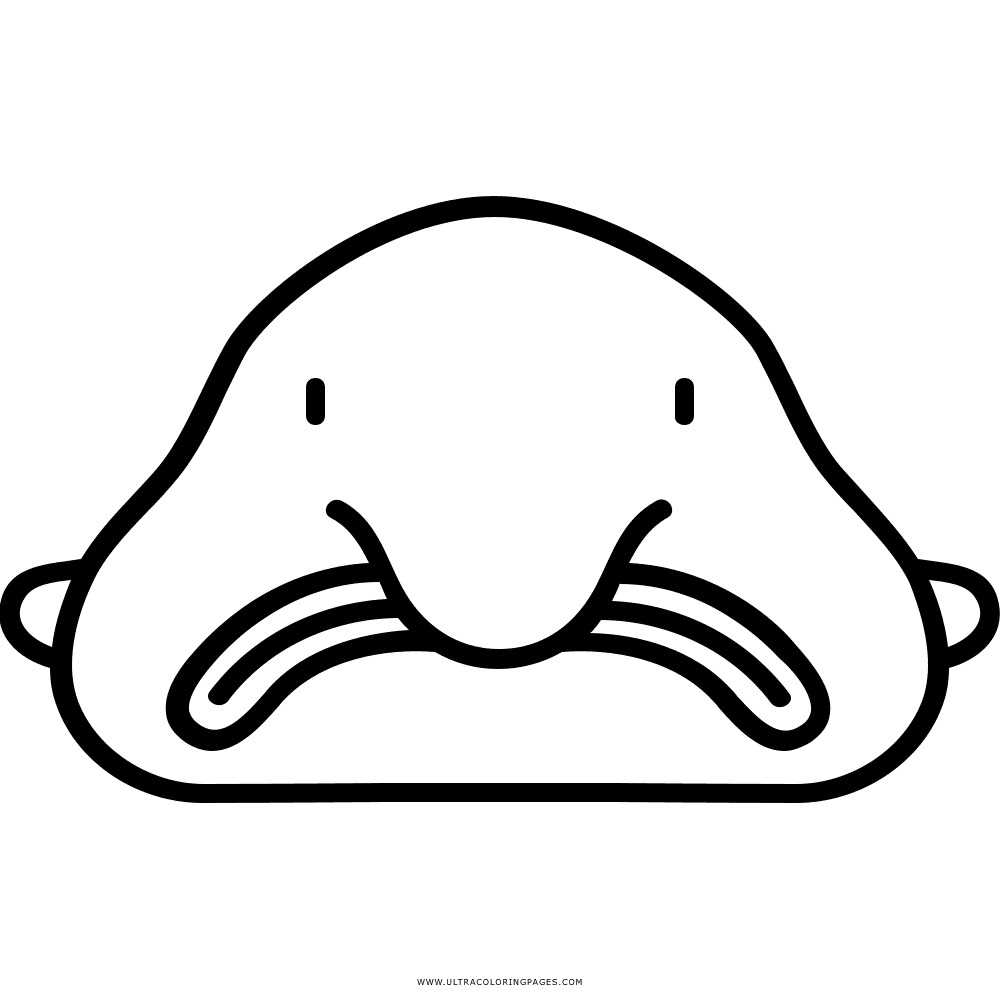 Killer drawing coloring page. Blobfish transparent for