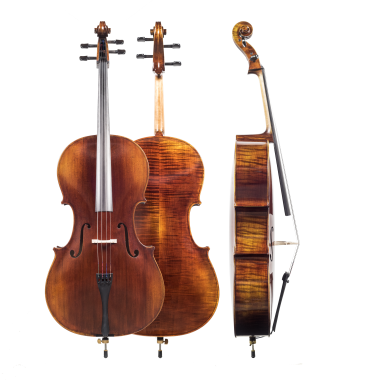 Bucket transparent cello. The amati model outfit
