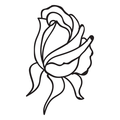 Bud drawing opening rose. Stroke icon transparent png