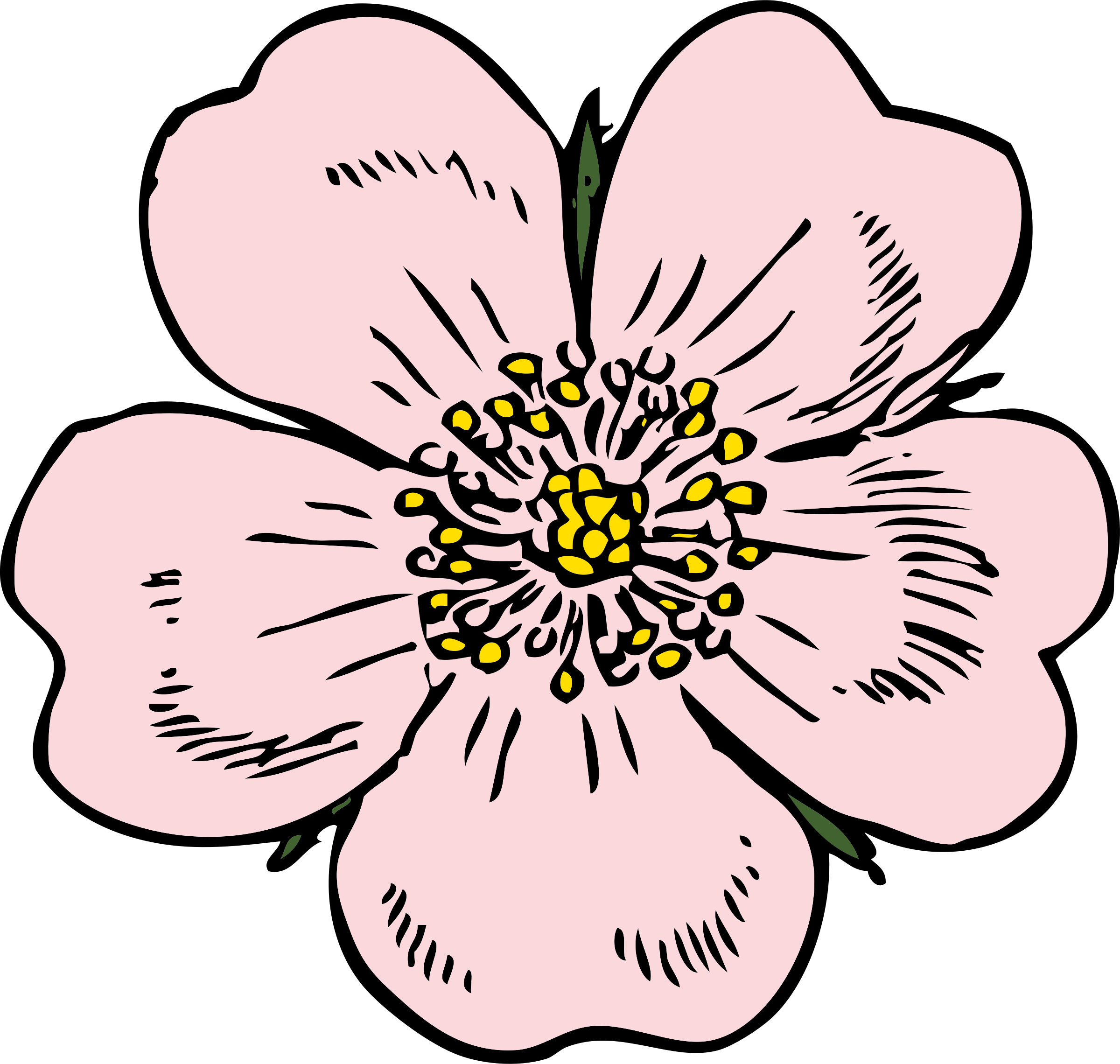 Bud drawing wild rose. Encode clipart to base