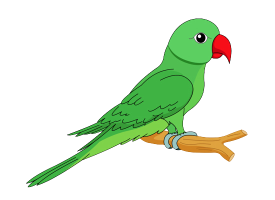 Parrot full free on. Buddha clipart cute clip black and white