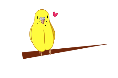 Budgie drawing english. Firealpaca test by moonpalette