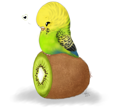 Budgie drawing fluffy bird. Some parakeets for work