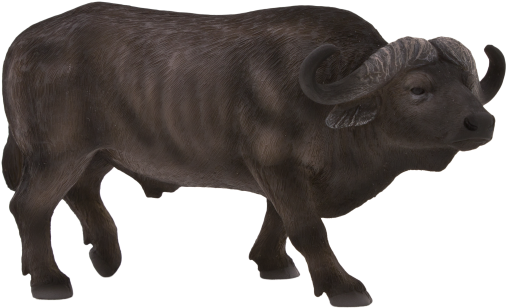 Buffalo transparent black and white. Download hd african clip