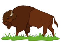 Buffalo clipart. Free clip art pictures