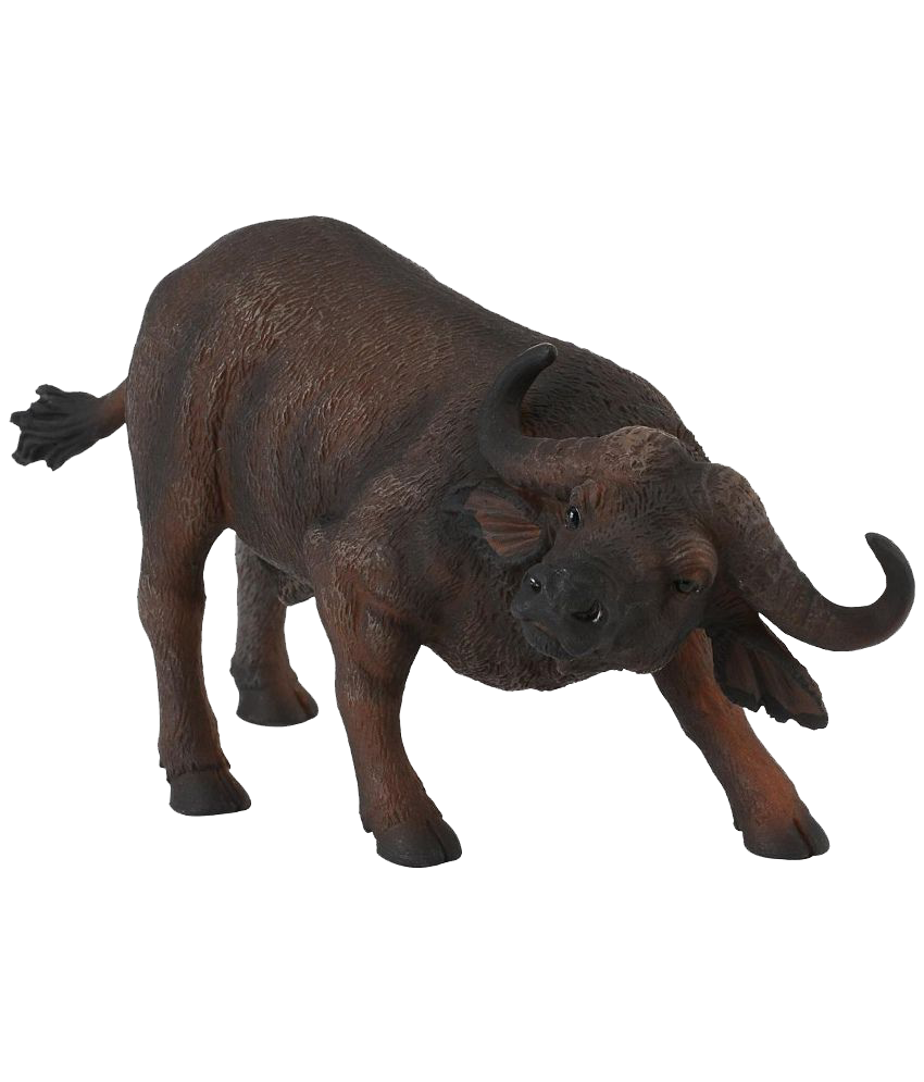 Buffalo transparent background. African png names