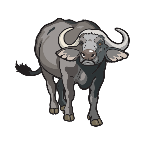 Buffalo transparent decal. Printed vinyl stickers factory