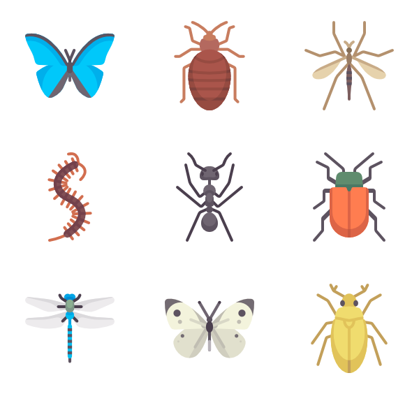 Bugs vector abstract. Insect icons free insects