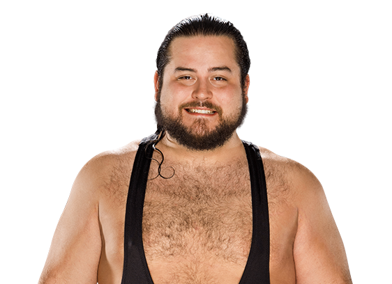 Bull dempsey png