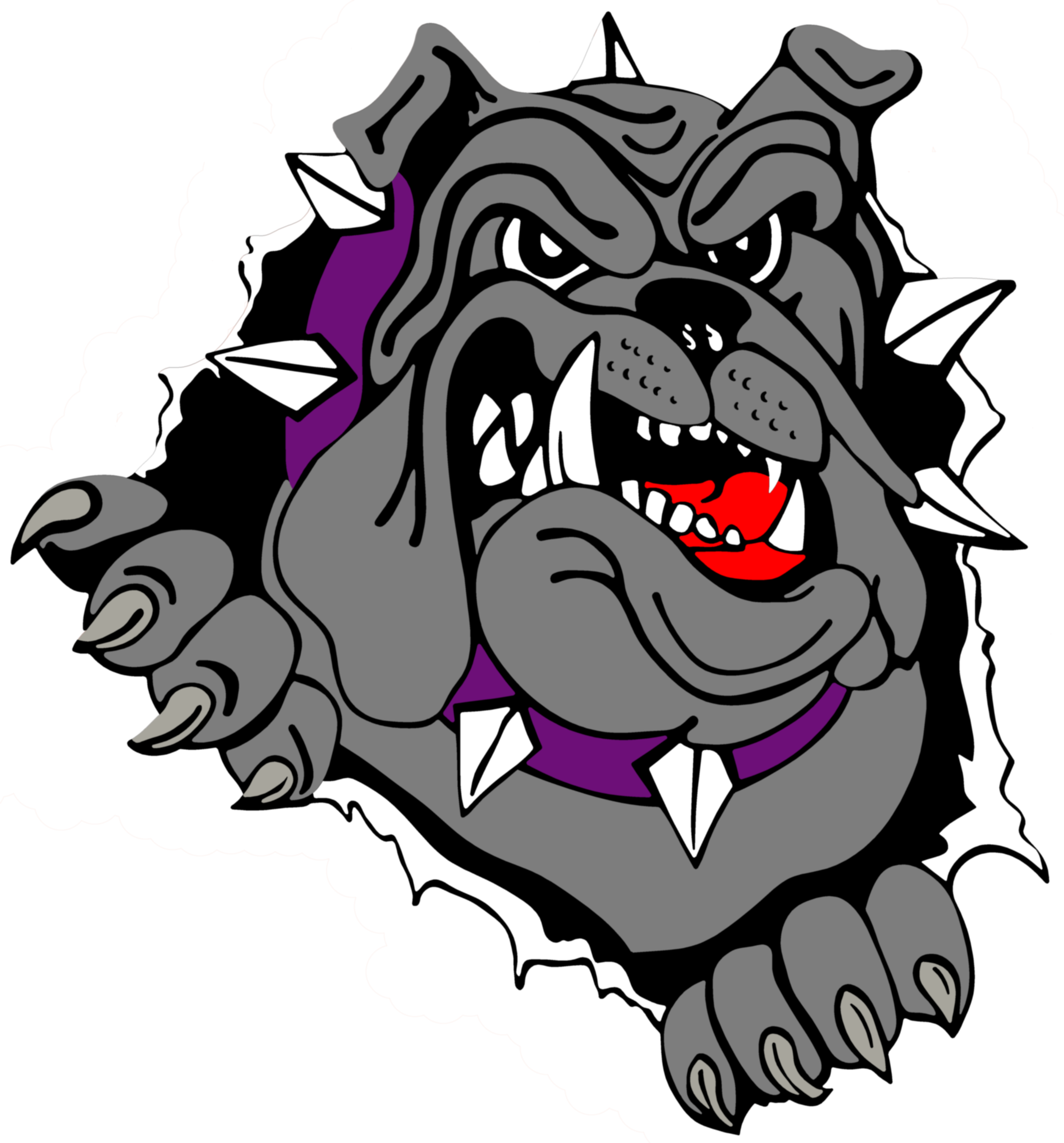 bulldog muscle png