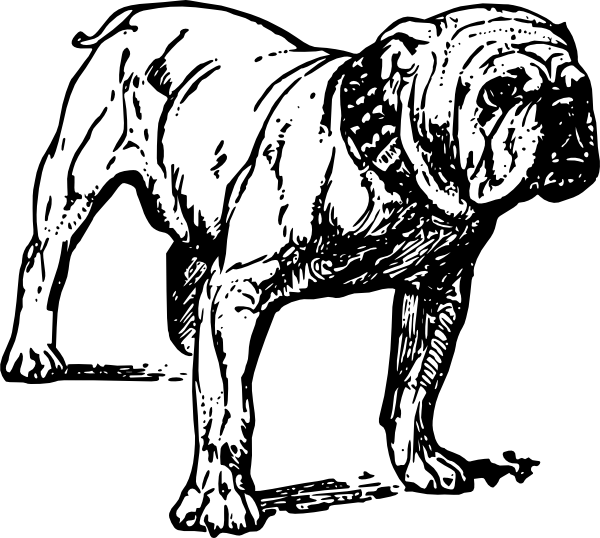 Free english cliparts download. Bulldog clipart face png free stock