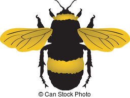 And stock illustrations vector. Bumblebee clipart clip art transparent stock
