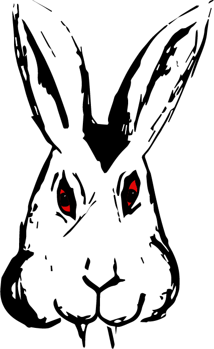 Bunnicula drawing rabbit. Taylor hoyum art
